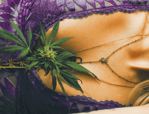 Best Strains for Sex: 19 Weed Strains that Can Make You Better in Bed